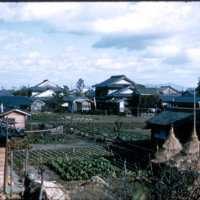 Japan, 1951:  Vegetable plots within an urban setting