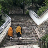 Hasedera - Monks walking  up  stairs