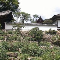 Hasedera - One building in temple complex